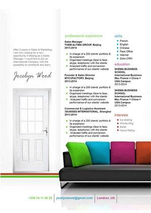 Mycvfactory-original resume-172-ENG
