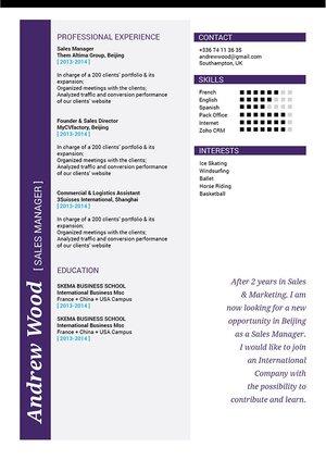 Mycvfactory-modern resume-207-ENG