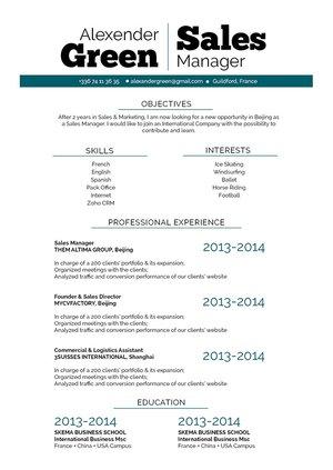 Mycvfactory-original resume-209-ENG