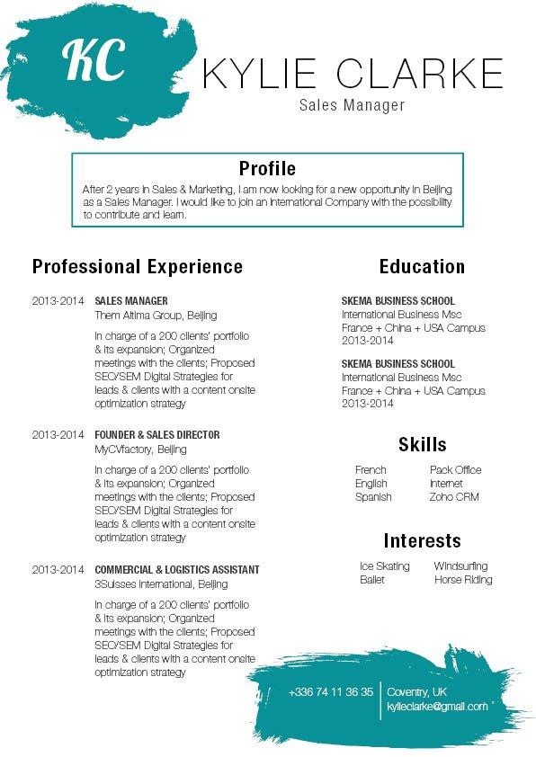 Mycvfactory-original resume-225-ENG