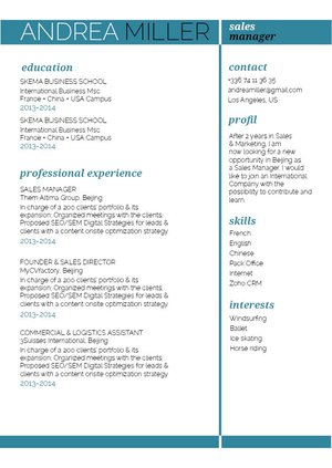 Mycvfactory-resume templates-236-ENG