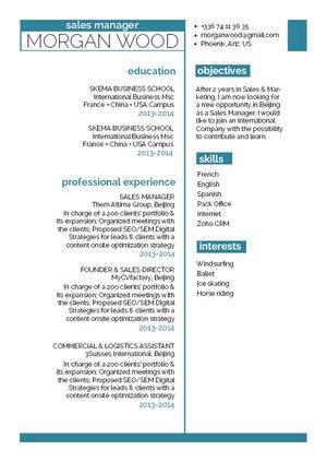 Mycvfactory-modern resume-239-ENG