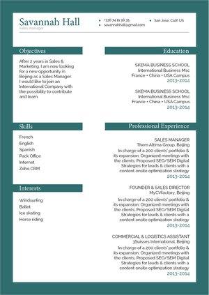 Mycvfactory-resume templates-243-ENG