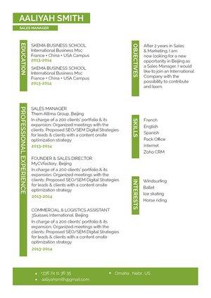 Mycvfactory-resume templates-260-ENG