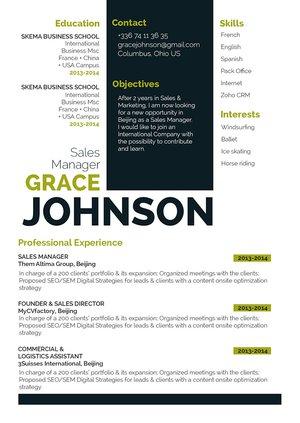 Mycvfactory-original resume-275-ENG