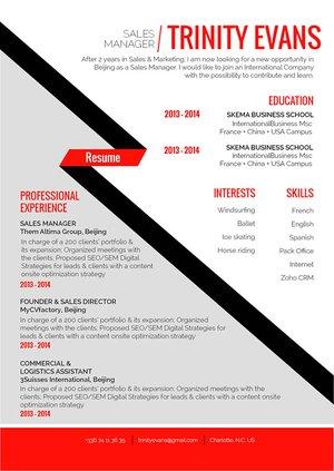 Mycvfactory-original resume-279-ENG