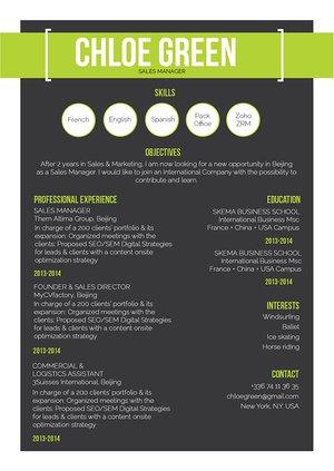 Mycvfactory-resume templates-283-ENG