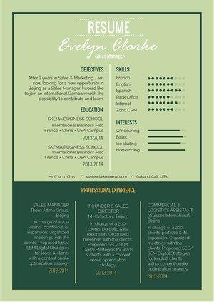 Mycvfactory-resume templates-288-ENG