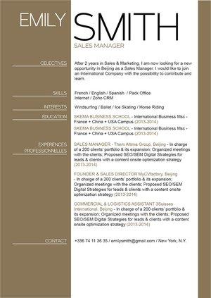 Mycvfactory-resume templates-290-ENG