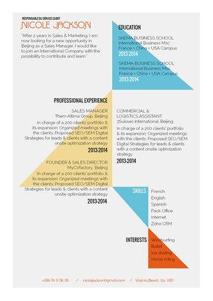 Mycvfactory-resume templates-291-ENG