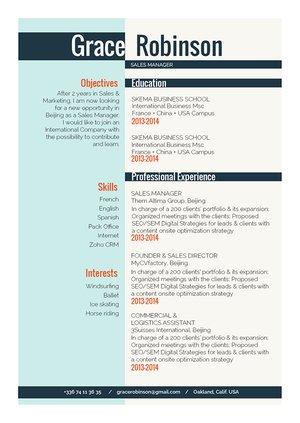 Mycvfactory-resume templates-295-ENG