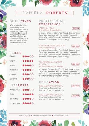 Mycvfactory-original resume-298-ENG