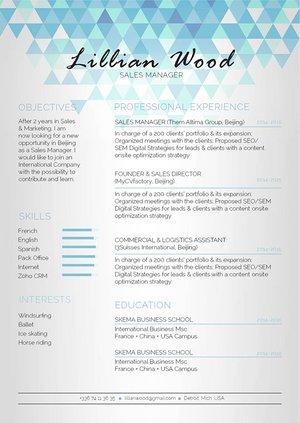 Mycvfactory-original resume-300-ENG