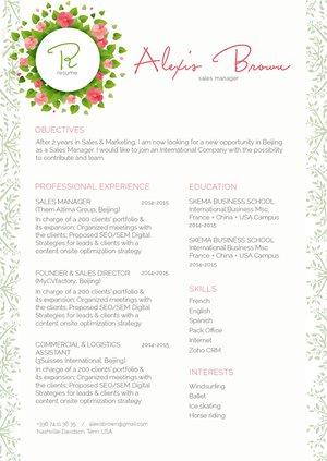 Mycvfactory-original resume-303-ENG