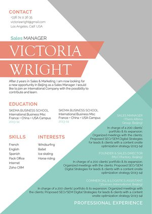 Mycvfactory-original resume-306-ENG