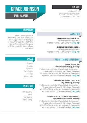 Mycvfactory-original resume-307-ENG