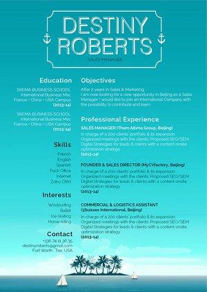 Mycvfactory-original resume-315-ENG