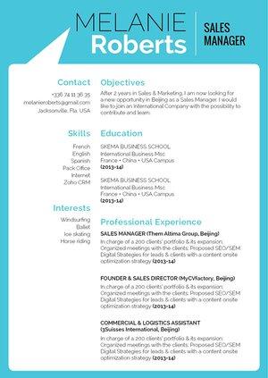 Mycvfactory-resume templates-318-ENG
