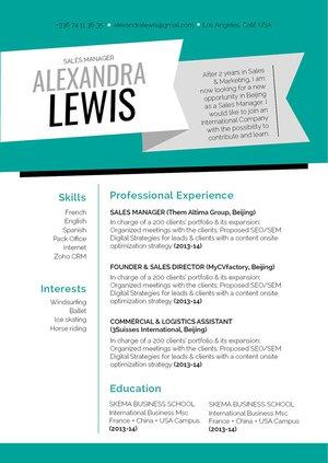 Mycvfactory-resume templates-319-ENG