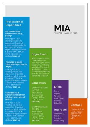 Mycvfactory-resume templates-324-ENG