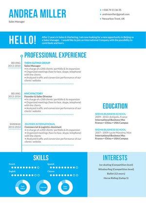 Mycvfactory-original resume-35-ENG