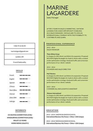 Mycvfactory-resume templates-76-ENG
