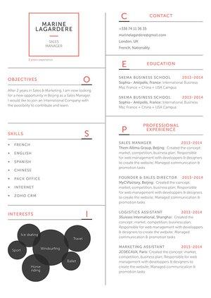 Mycvfactory-original resume-83-ENG