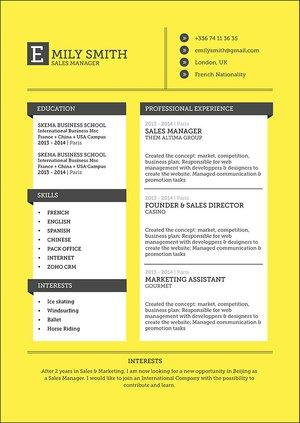 Mycvfactory-original resume-92-ENG