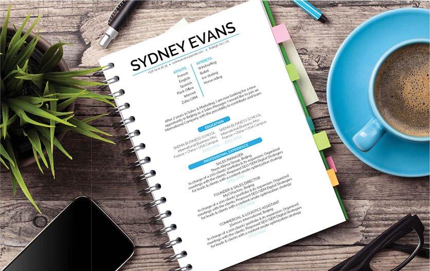 Mycvfactory-resume templates-252-ENG