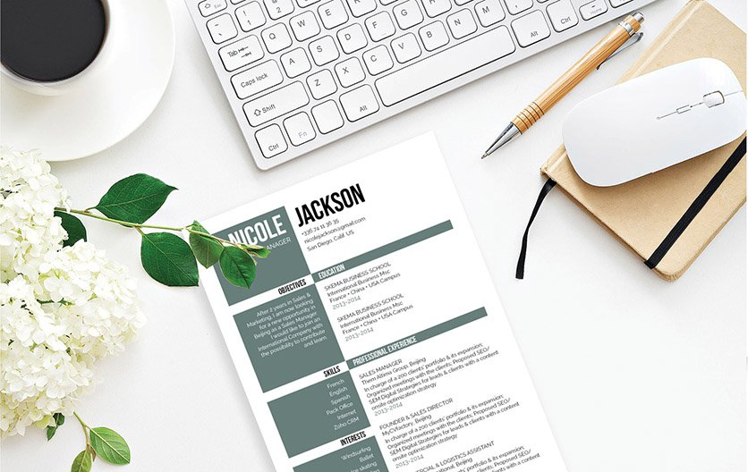 Mycvfactory-resume templates-241-ENG