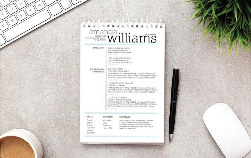 Mycvfactory-resume templates-250-ENG
