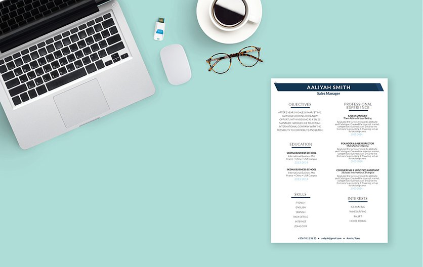 Mycvfactory-resume templates-247-ENG