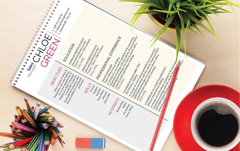 Mycvfactory-modern resume-245-ENG