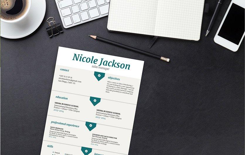 Mycvfactory-original resume-246-ENG