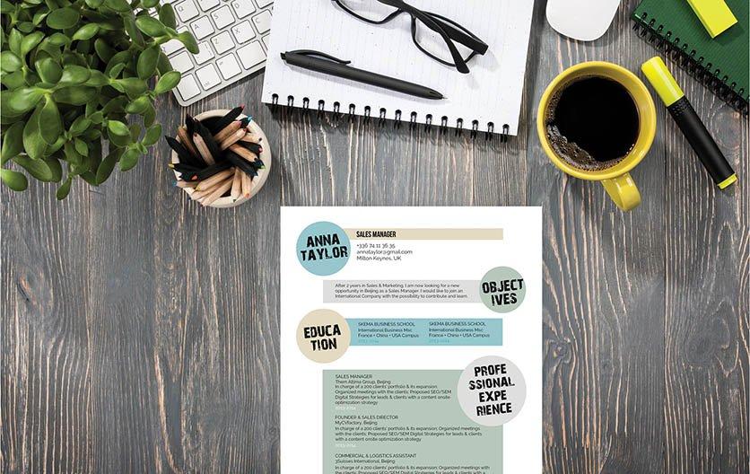 Mycvfactory-original resume-232-ENG
